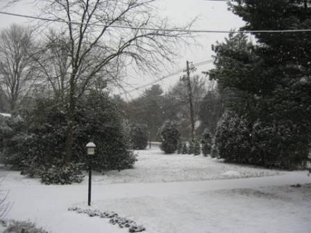 jan15-2009